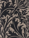 Product: 210479-Thistle